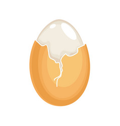 boiled egg cracked eggshell and proteins isolated vector image