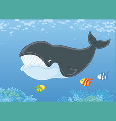 Bowhead whale and funny small fishes vector