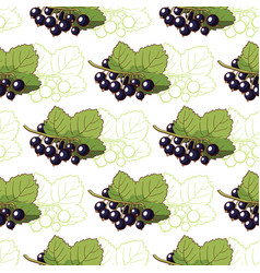 Currant seamless pattern vector