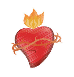 Drawing sac heart catholic vector