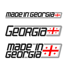 made in georgia vector image