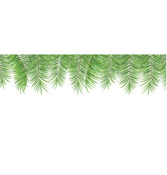 seamless summer pattern palm leaves on white vector image