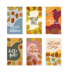 set social media stories design banner autumn vector image