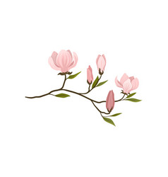 Small twig with gentle pink flowers blooming vector