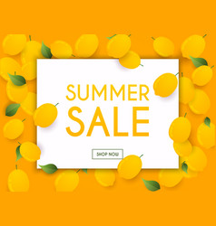 summer sale banner poster flyer lemon on a vector image