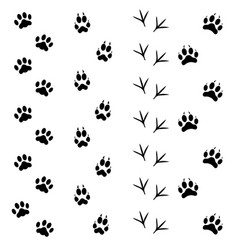 black animal tracks set vector image