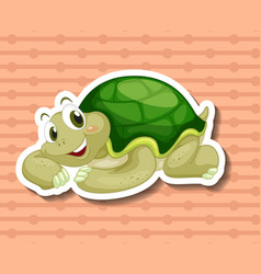 Turtle vector image vector image