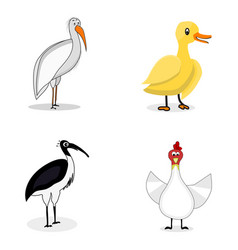 set of birds character vector image vector image