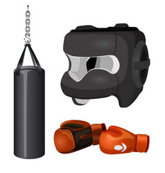 Boxing equipment punchbag on chain protective vector