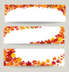 Fall leaves banner set swirl autumn leaf vector