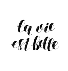 La vie est belle Life is beautiful Lettering vector