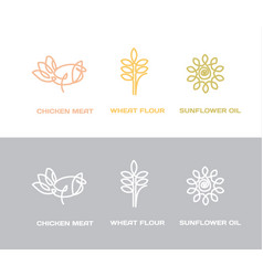 natural concept modern simple icons vector image