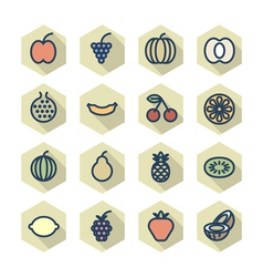 Thin line icons for fruits vector