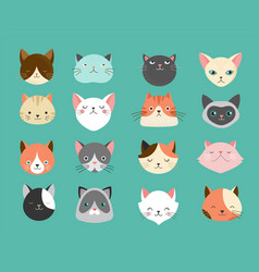 collection of cats vector image vector image