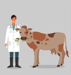 Cow veterinarian character vector
