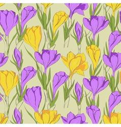 Crocus seamless pattern 2 purple yellow vector