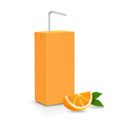 Fresh ripe orange and juice carton package vector