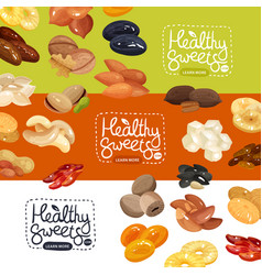 nuts banners set vector image