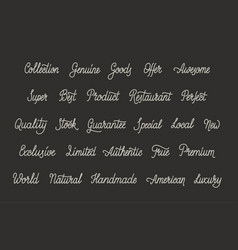 simple calligraphic words vector image