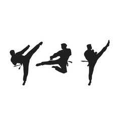taekwondo icon design vector image