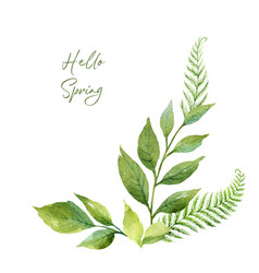 watercolor wreath with green branches vector image