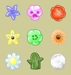 Set of flowers vector image