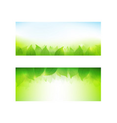 set of banner gradient green background element vector image
