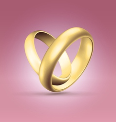 Couple of golden rings over pink vector image vector image