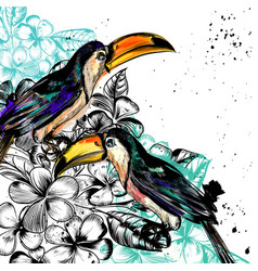 Background with tropical flowers and toucan birds vector