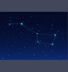 big bear constellation in the night starry sky vector image