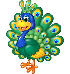 Cartoon funny peacock isolated on white background vector