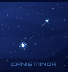 constellation canis minor lesser dog night star vector image