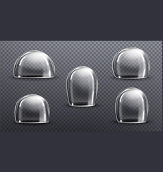 Glass or clear plastic domes vector