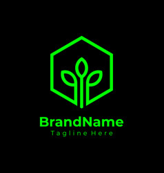 hexagon green nature logo ecology logo vector image