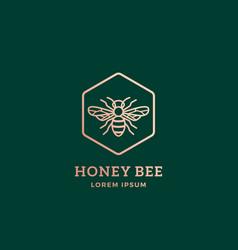 Premium honey bee abstract sign symbol vector