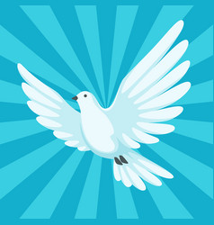 Background with white dove beautiful pigeon faith vector