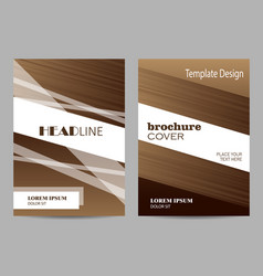 brochure template layout design abstract brown vector image