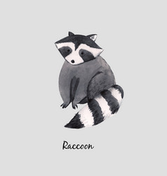 Cute watercolor baraccoon vector