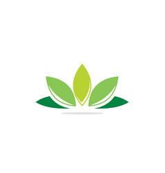 green leaf lotus flower logo vector image
