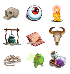 Halloween symbols toad eye pot poison and other vector