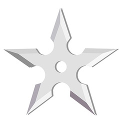 Ninja throwing star vector image