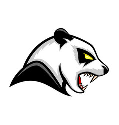 panda bear icon vector image