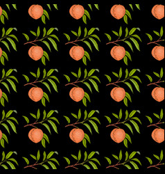 peach branch with fruit and leaves seamless vector image