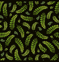 seamless background with fern on black vector image