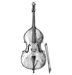 vintage of contrabass violin vector image