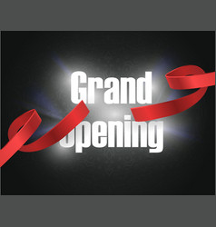 grand opening background with lettering sign vector image
