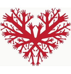 hearth of hands vector image vector image