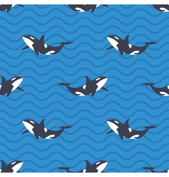 seamless pattern with killer whales or orcas in vector image