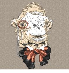 funny Camel hipste vector image