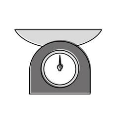 kitchen balance isolated icon vector image